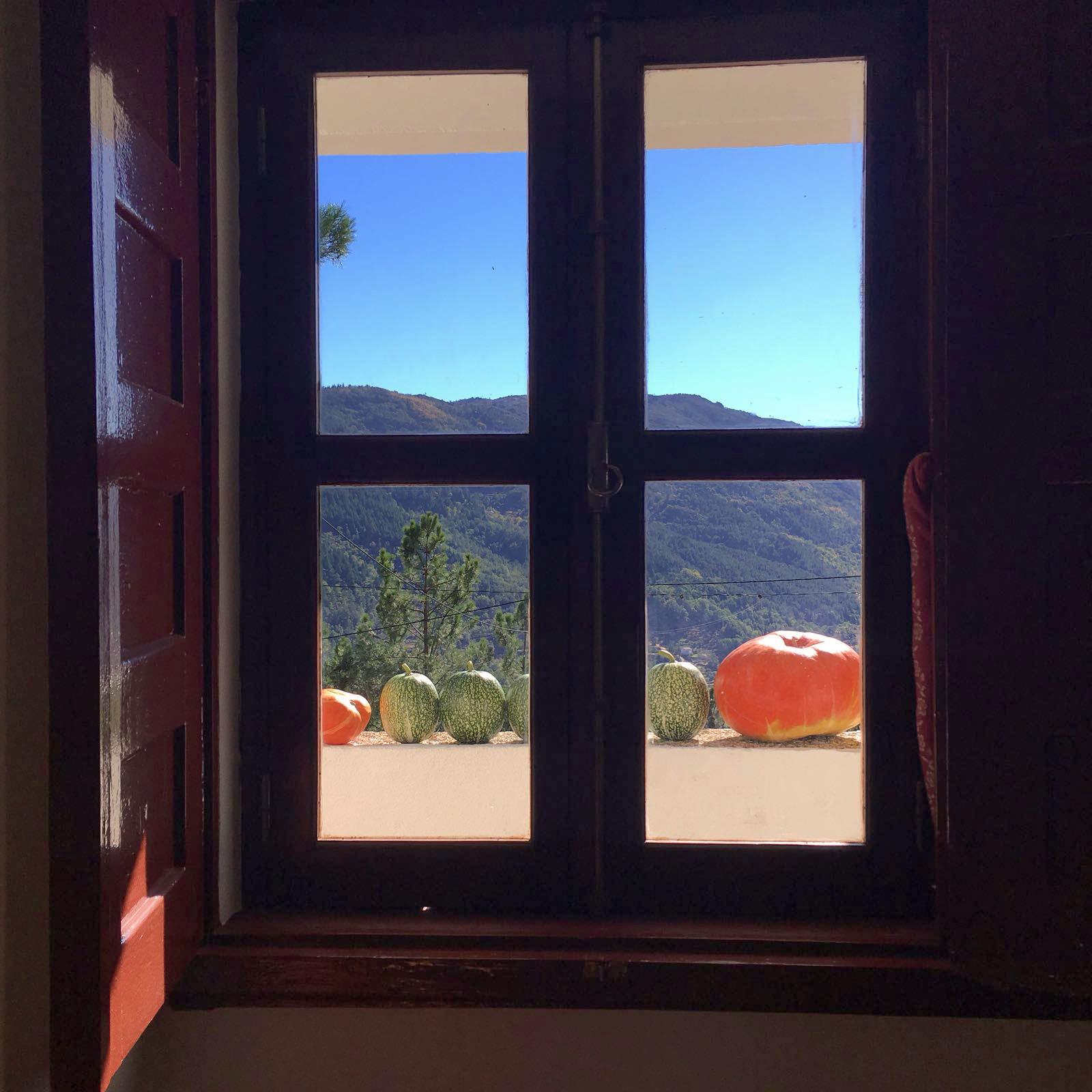 A janela encontrou a montanha