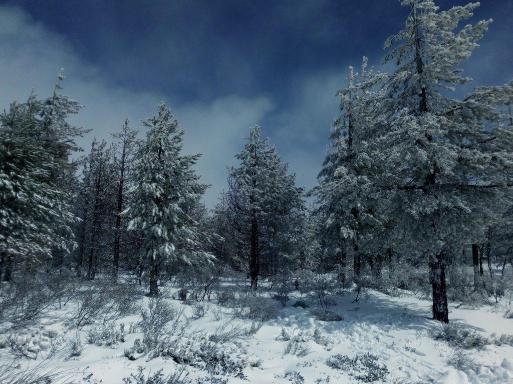 A neve chegou à Estrela